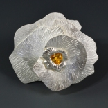 Shell brooch color fixed
